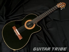 1991GG001