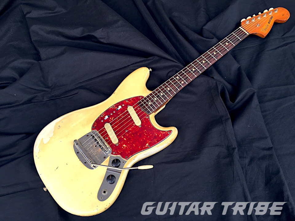 1965FS006
